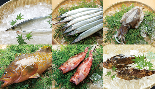 Japanese fresh fish japanese marine products products for Fishpond products