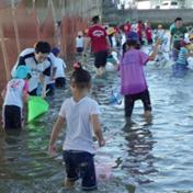 "Joto Primary School ""Set-Net Fishing 2012"" in Sousha River"
